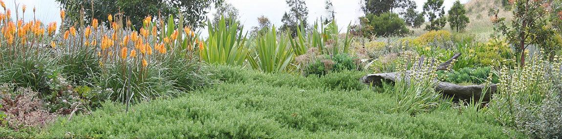 Keilor Nth, Country Garden